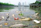 水污染现状