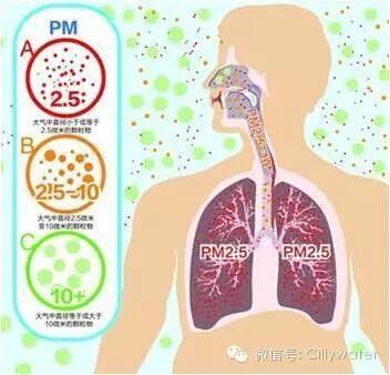 PM2.5真相