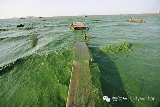 水污染加剧