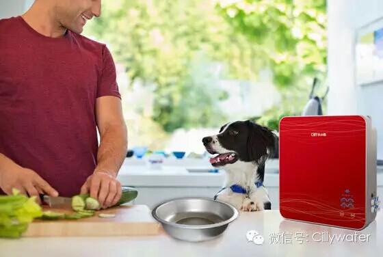 家庭装净水器