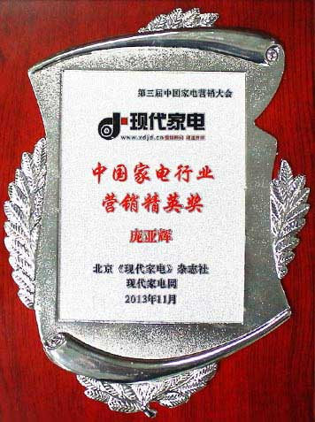 中国家电行业营销精英奖