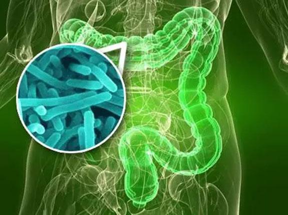 抗生素主要来源