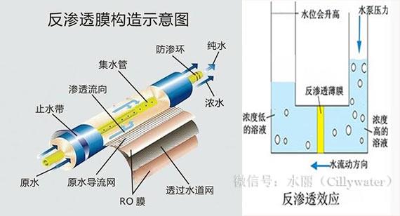 反渗透膜构造示意图